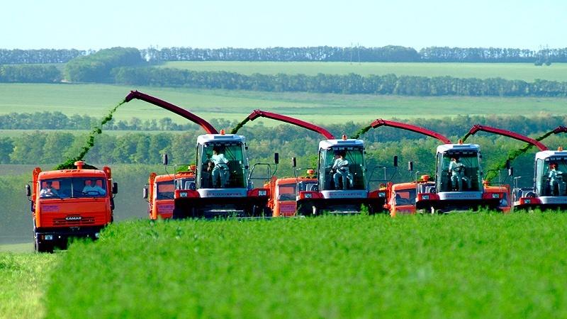 Россельхозбанк выдаст на посевную кампанию в ПФО не менее 12,5 млрд руб. кредитов