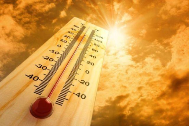 Аномально-жаркую погоду ожидают в Самарской области