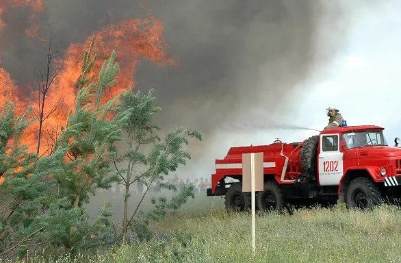 Пермские ученые разработали мину для тушения лесных пожаров