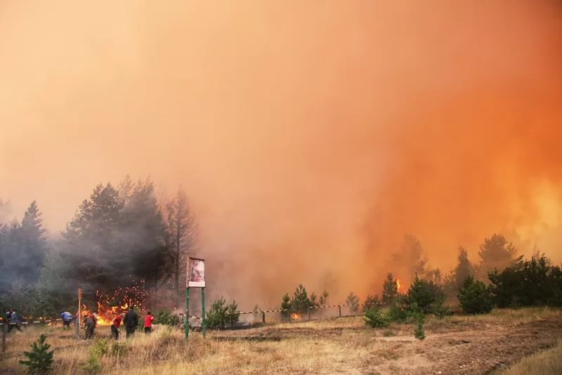 Более 40 природных пожаров потушили в Свердловской области за майские праздники