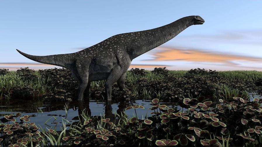 Останки неизвестного ранее науке титанозавра нашли в Ульяновской области