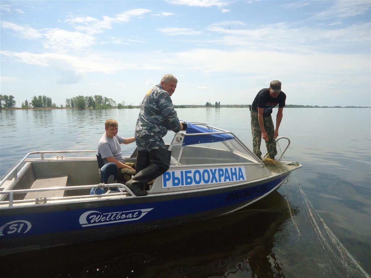 Акция «Волга без сетей» пройдет в Самарской области