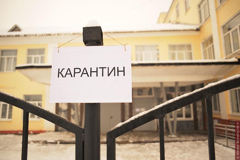 Более 700 вузов, школ и техникумов Саратовской области закрыты на карантин