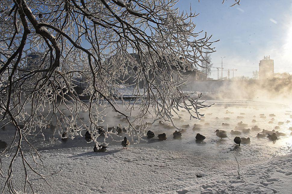 После потепления на Урал вновь вернутся морозы